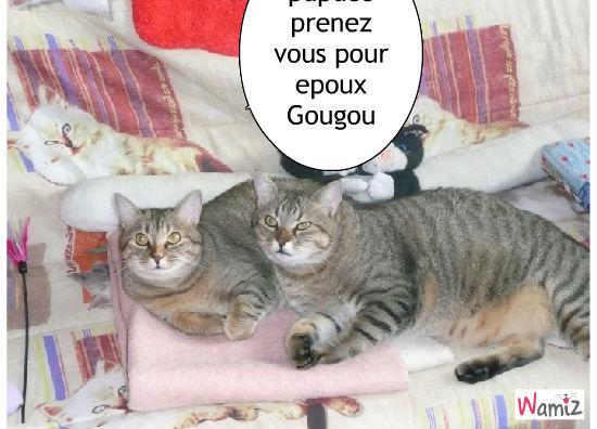 Le mariage de gougou, lolcats réalisé sur Wamiz