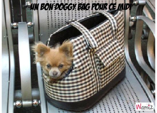 DOGGY BAG, lolcats réalisé sur Wamiz