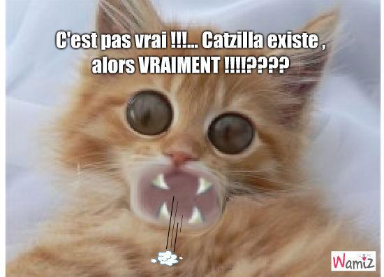 Catzilla , le vrai de vrai !!!, lolcats réalisé sur Wamiz