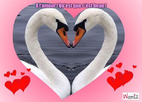 A l'amour !, lolcats réalisé sur Wamiz