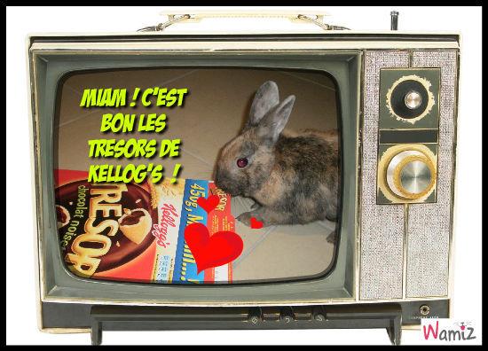 Les lapins mangent de tout !, lolcats réalisé sur Wamiz