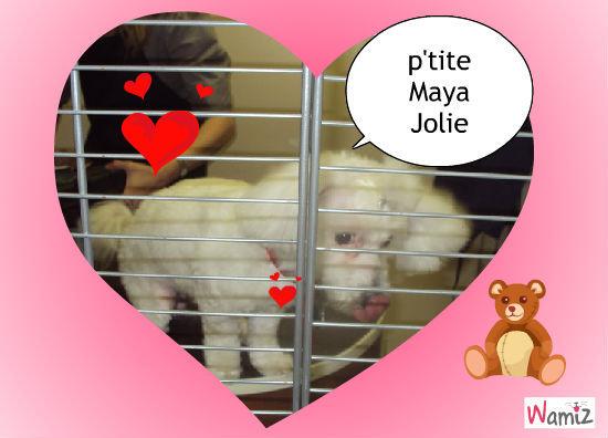p'tite Maya Jolie, lolcats réalisé sur Wamiz