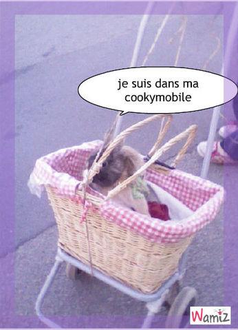 cookymobile, lolcats réalisé sur Wamiz