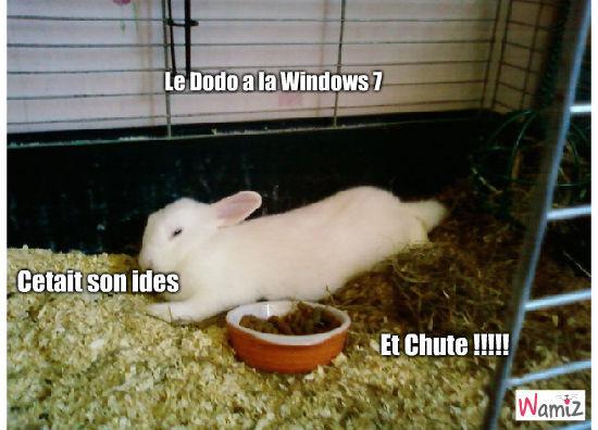 Windows 7, lolcats réalisé sur Wamiz