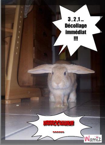 Décollage !!!, lolcats réalisé sur Wamiz