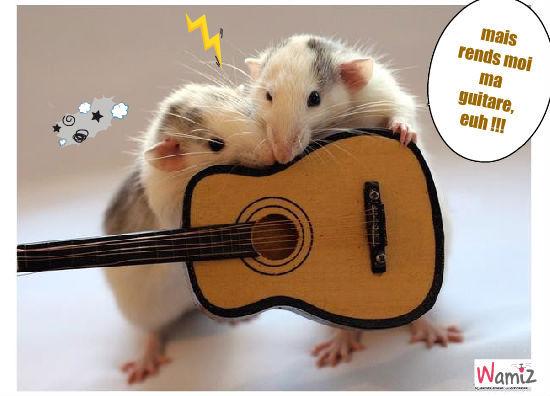 Guitare pour rats, lolcats réalisé sur Wamiz