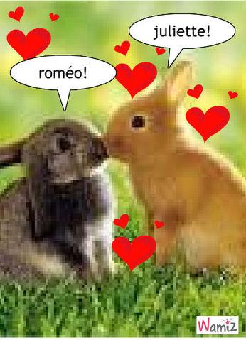 juliette et roméo, lolcats réalisé sur Wamiz