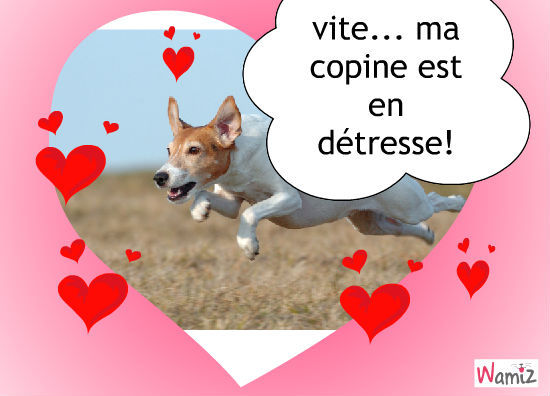 ah!l'amour, lolcats réalisé sur Wamiz