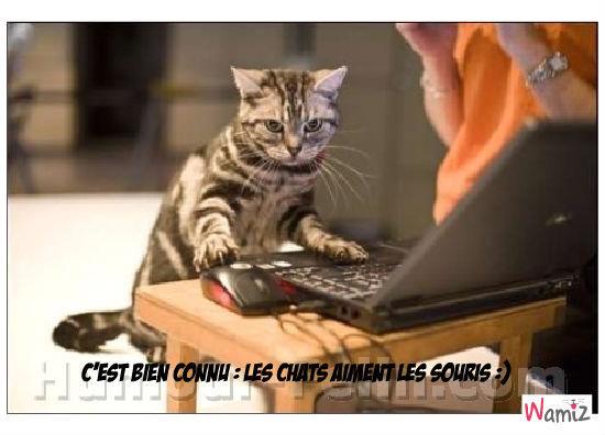 C'est bien connu : les chats aiment les souris :), lolcats réalisé sur Wamiz