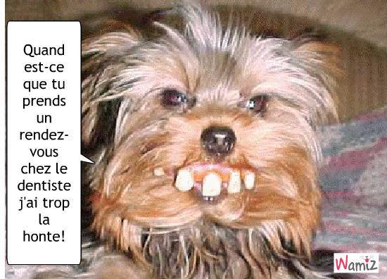 Mauvaise dentition?, lolcats réalisé sur Wamiz