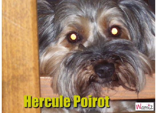 Hercule Poirot : le chien , lolcats réalisé sur Wamiz