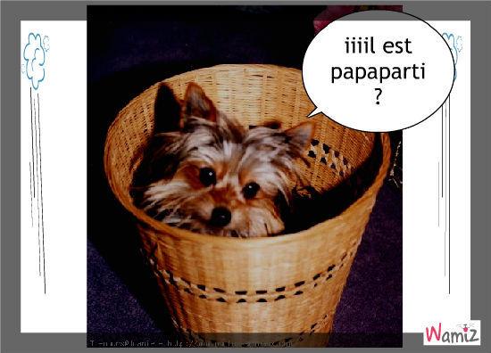 iiil est papapartiii ?, lolcats réalisé sur Wamiz