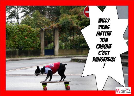 Le Dog-skateur, lolcats réalisé sur Wamiz
