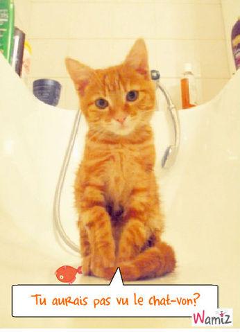 Le chat-von, lolcats réalisé sur Wamiz