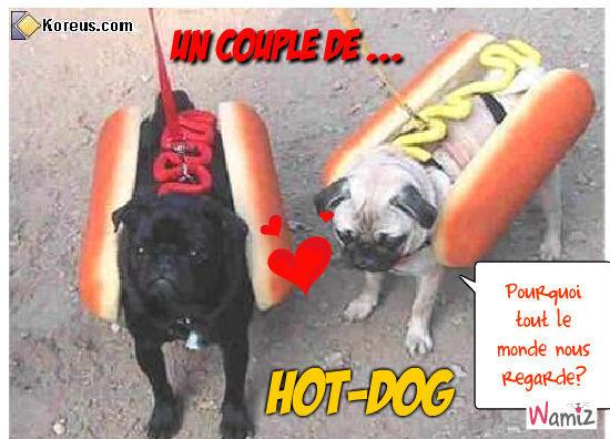 Le couple de HOT-DOG, lolcats réalisé sur Wamiz