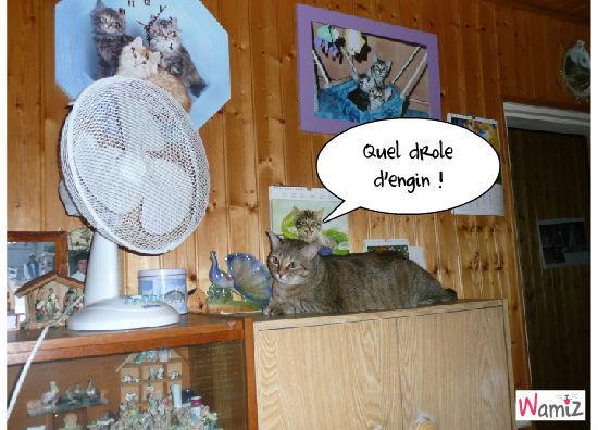 le ventilateur , lolcats réalisé sur Wamiz