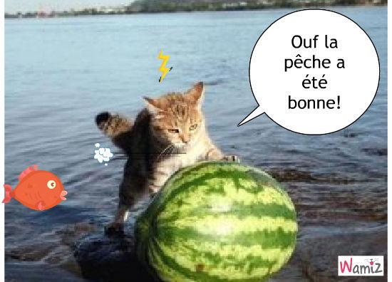 AH la bonne pêche!!, lolcats réalisé sur Wamiz