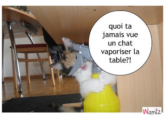 moi et la table, lolcats réalisé sur Wamiz