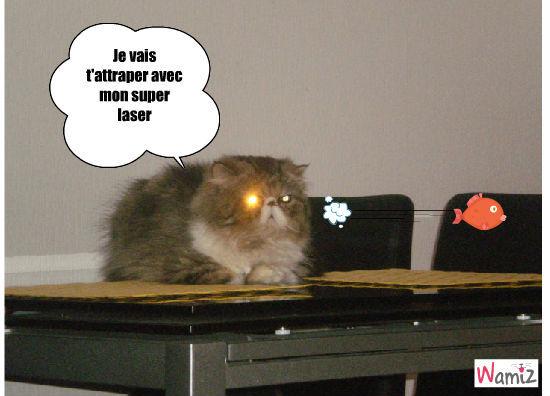Laser Cat, lolcats réalisé sur Wamiz