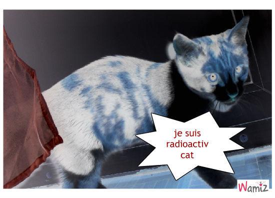 le chat radioactiv, lolcats réalisé sur Wamiz
