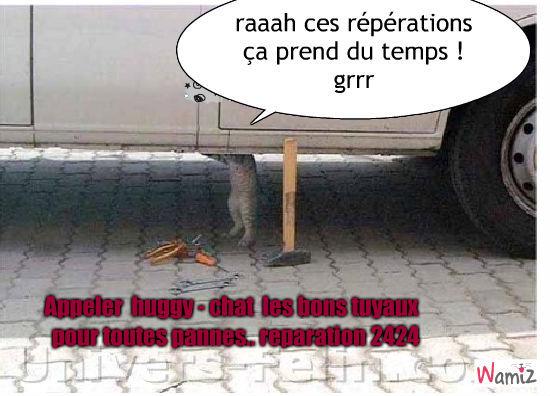 hugy-chat les bons tuyaux, lolcats réalisé sur Wamiz
