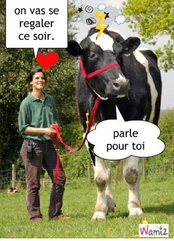 la vache, lolcats réalisé sur Wamiz