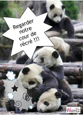 La guerre des pandas ..., lolcats réalisé sur Wamiz