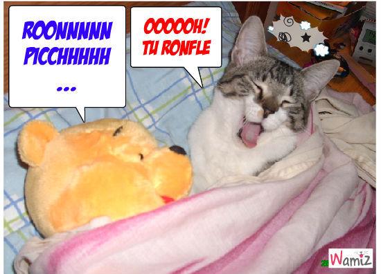 RONFLEUR!!!!!!, lolcats réalisé sur Wamiz