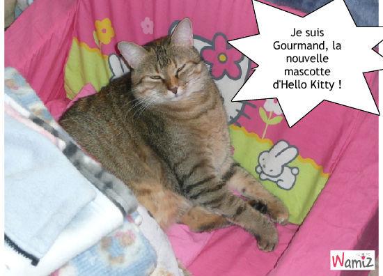 J'ai nommée Gourmand Kitty, lolcats réalisé sur Wamiz