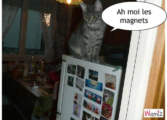 les magnets, lolcats réalisé sur Wamiz