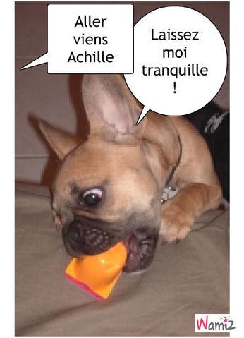 Achille, lolcats réalisé sur Wamiz
