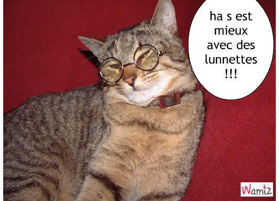 chat avec des lunnettes, lolcats réalisé sur Wamiz