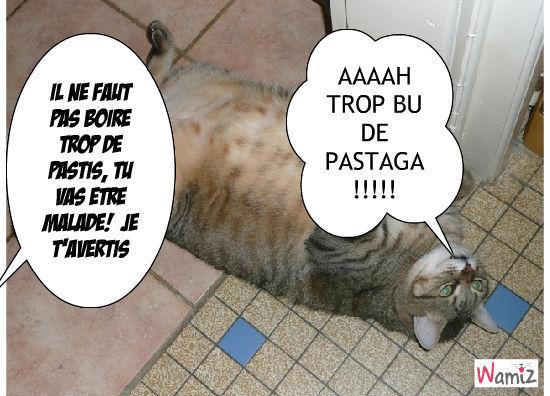 Bon Pastaga !, lolcats réalisé sur Wamiz