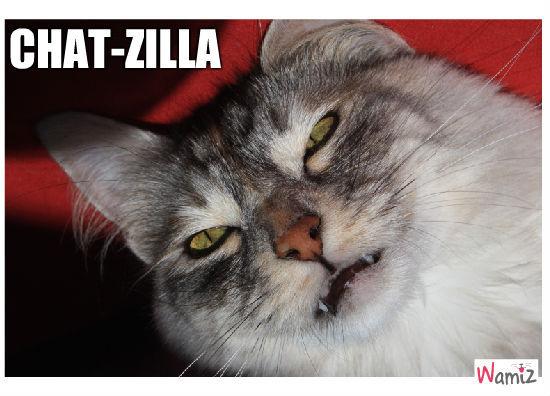 chatzilla, lolcats réalisé sur Wamiz