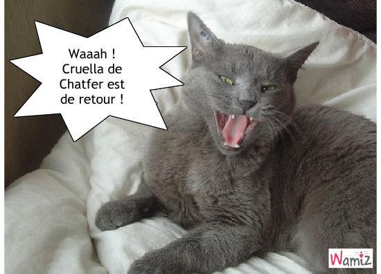 Cruelle de Chatfer: THE retour !!, lolcats réalisé sur Wamiz