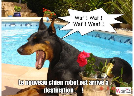 La nouvelle technologie canine, lolcats réalisé sur Wamiz