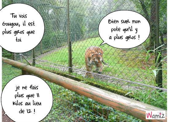 Gougou au zoo , lolcats réalisé sur Wamiz