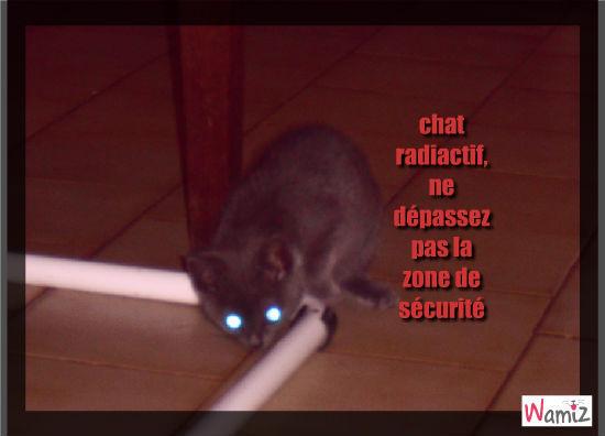 chat radioactif, lolcats réalisé sur Wamiz