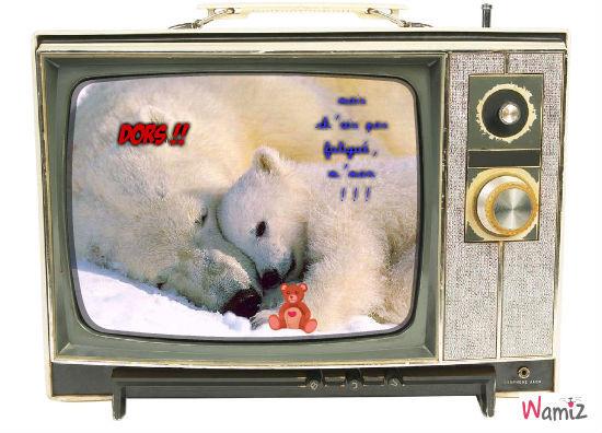 bonne nuit, monsieur l'ourson réveiller !!, lolcats réalisé sur Wamiz