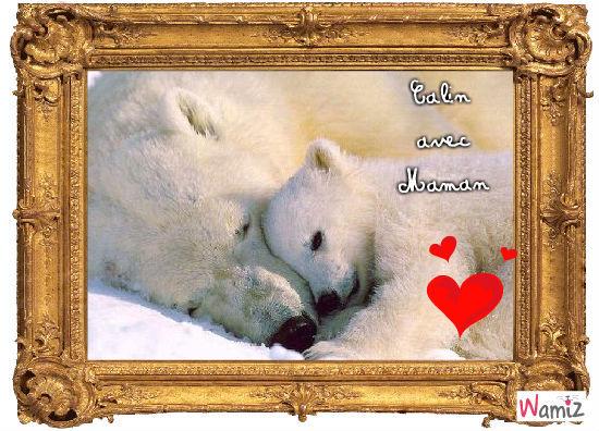Calins d'ours blancs, lolcats réalisé sur Wamiz