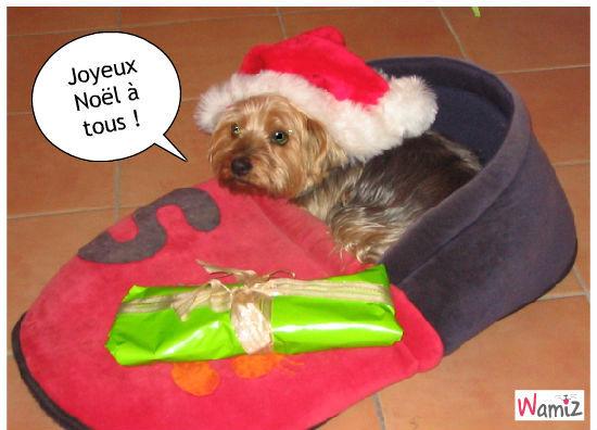 Noël, lolcats réalisé sur Wamiz