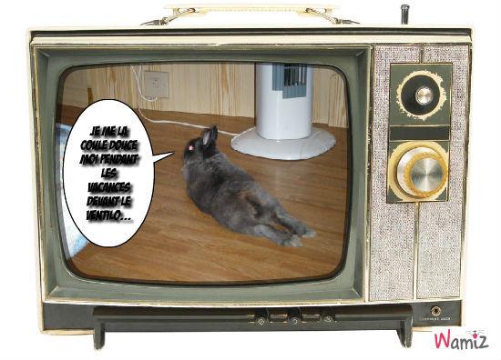 Les vacances du lapinos !, lolcats réalisé sur Wamiz