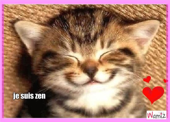 zen, lolcats réalisé sur Wamiz