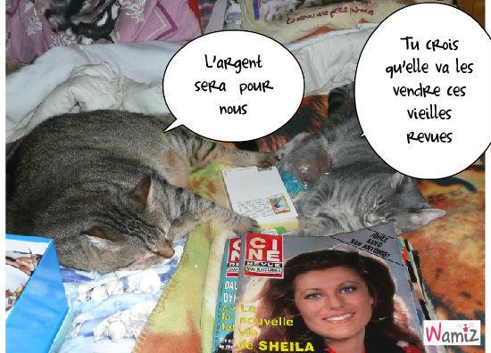 la vente des vieilles revues, lolcats réalisé sur Wamiz