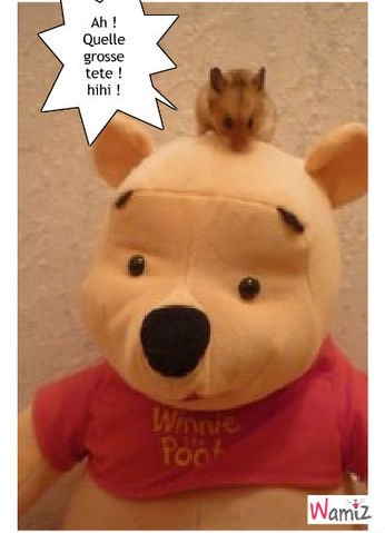 Freddy et Winnie, lolcats réalisé sur Wamiz
