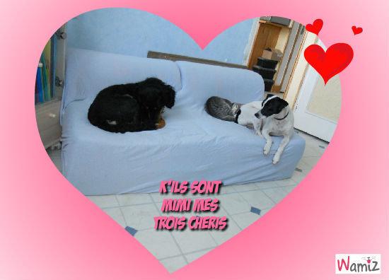 Mes trois amour, lolcats réalisé sur Wamiz