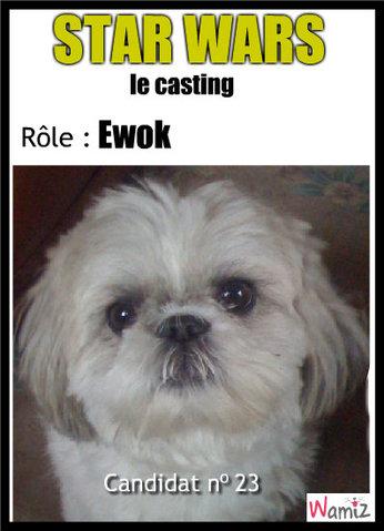 Star Wars - Le retour du Ewok, lolcats réalisé sur Wamiz
