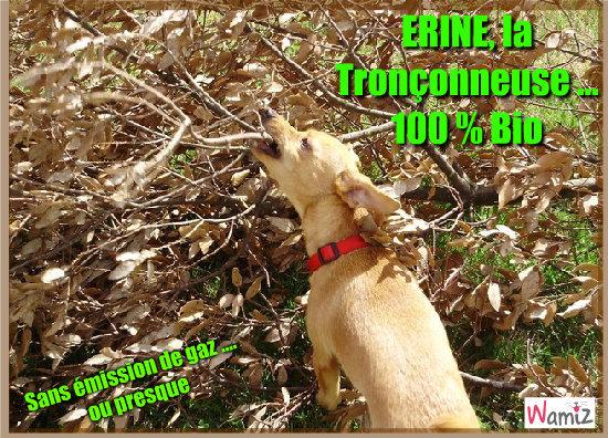 Erine 100 % Bio , lolcats réalisé sur Wamiz