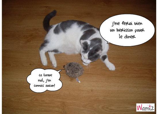 le chat et le herisson, lolcats réalisé sur Wamiz