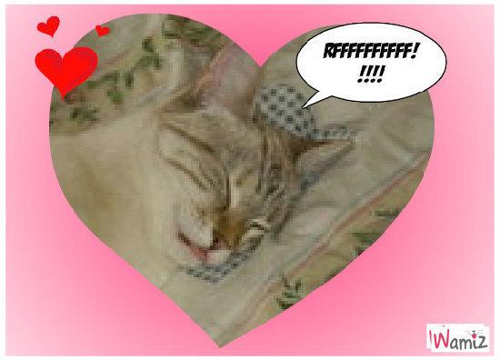 chataigne qui dore RFFFF!!!, lolcats réalisé sur Wamiz